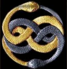 kundalini snakes