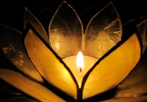 candle-flower